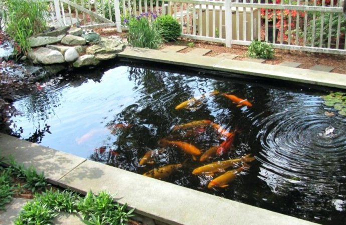 Guide for Getting The Best Fish Pond Sealer
