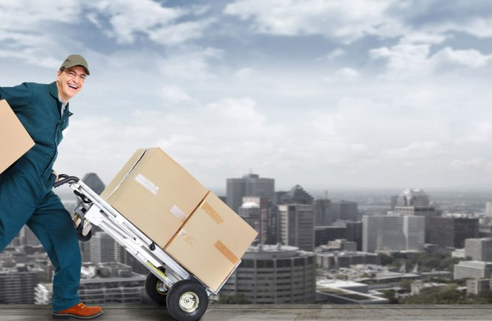 What Should You Consider When Looking For A Removalist?