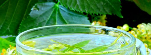 What Mistakes That You Might Be Unknowingly Be Making While Consuming Your Healthy Green Tea?